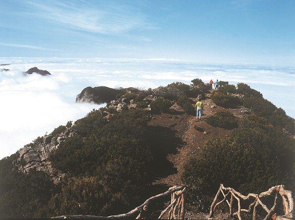 Footpath to Pico Ruivo