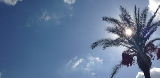 Cyprus sunshine