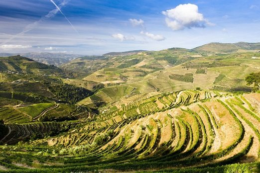 Douro Valley Holidays