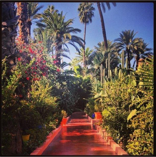Majaorelle Gardens, Marrakech