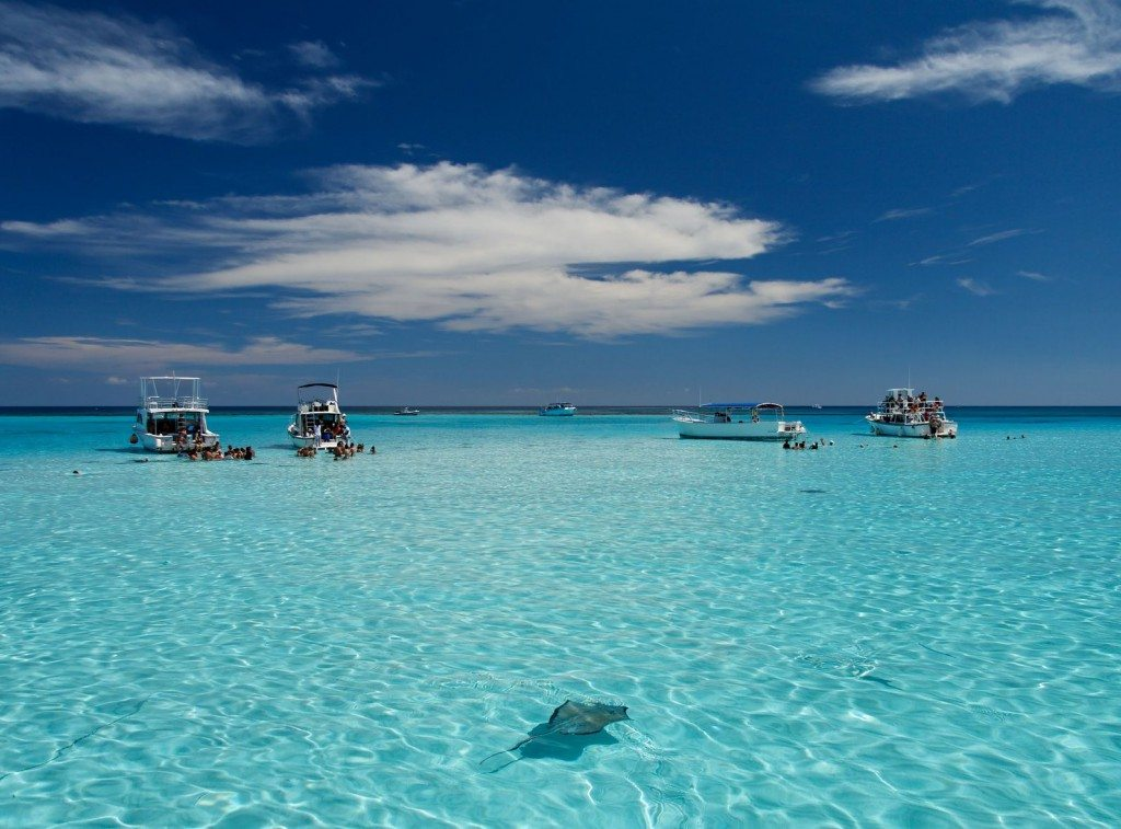 4th thing to do in Antigua: Stingray City