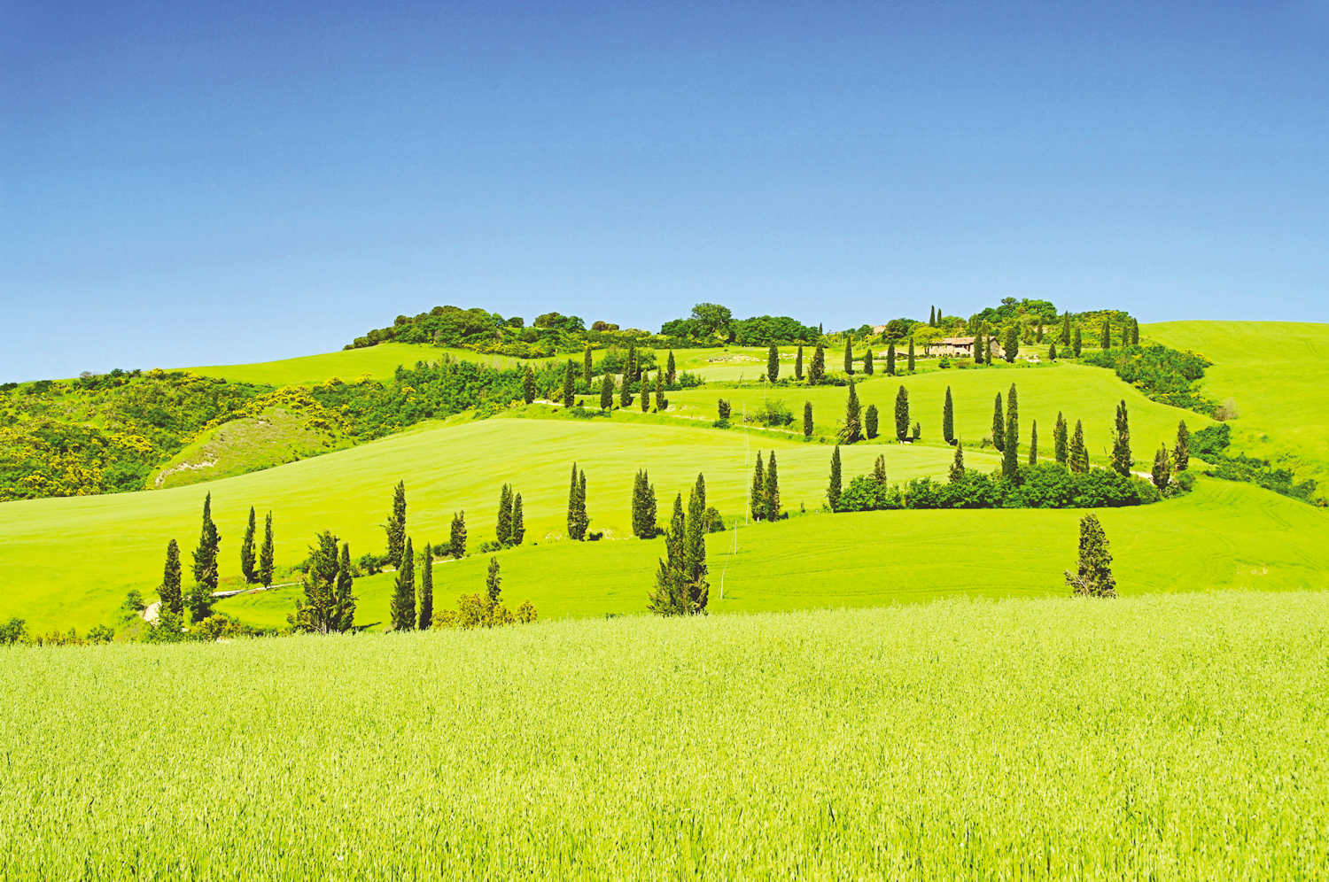 Val d Orcia, Tuscany