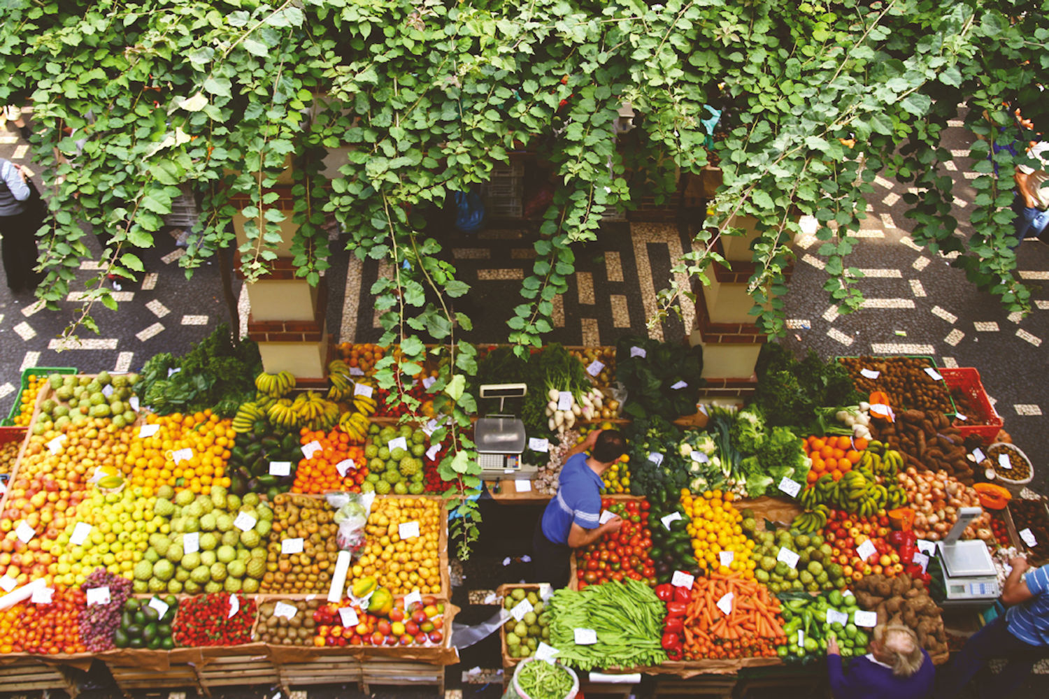 food market in Funchal, madeira