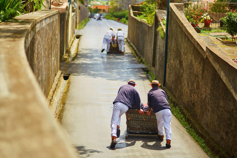 taboggan ride Madeira