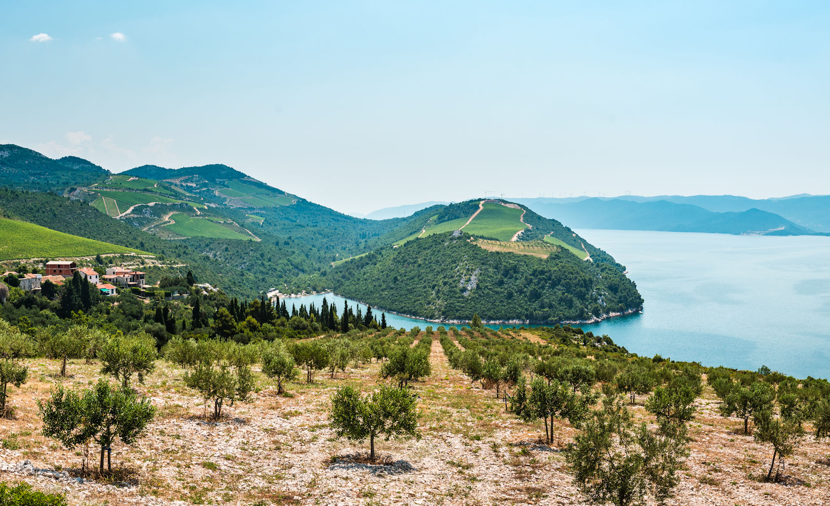 cilipi, croatia's wine region
