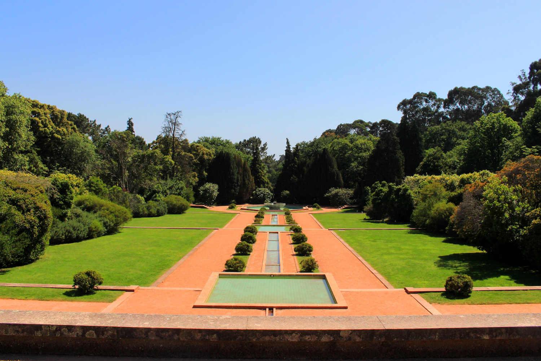 View a Serralves Museum