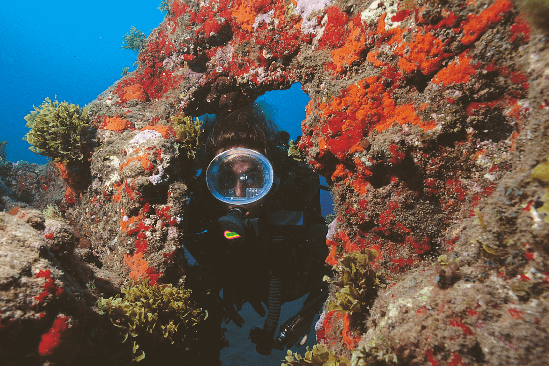 Snorkelling in Gran Canaria