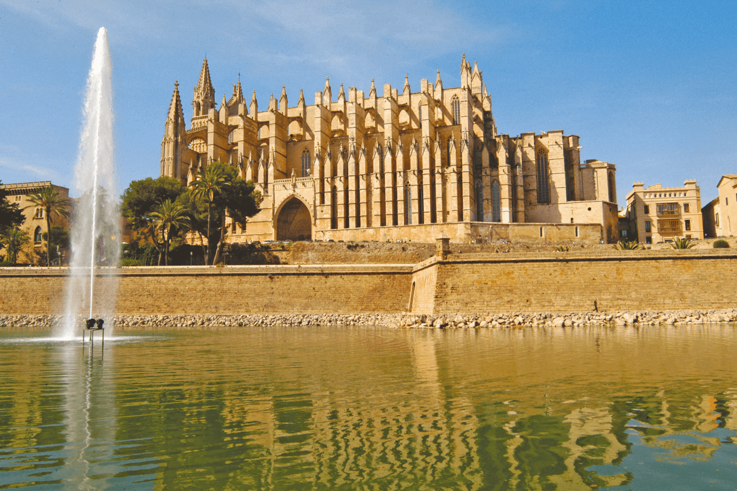 View of Palma Cathedral